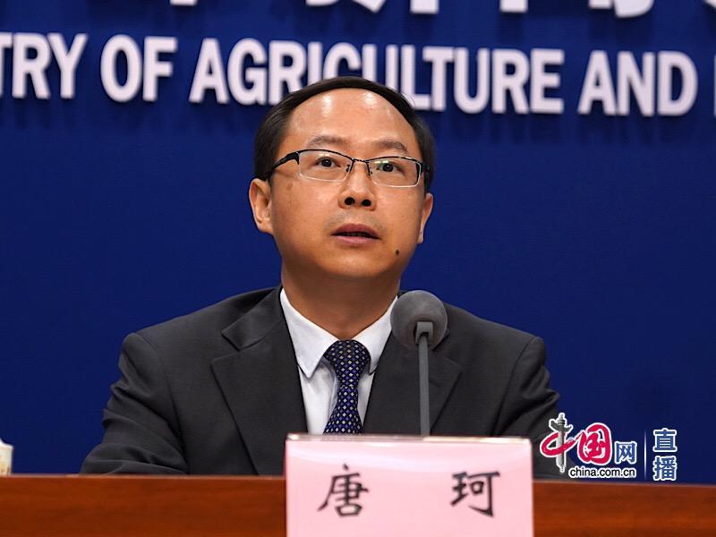 农业农村部:我国粮价稳中有涨 玉米价格涨幅较为明显